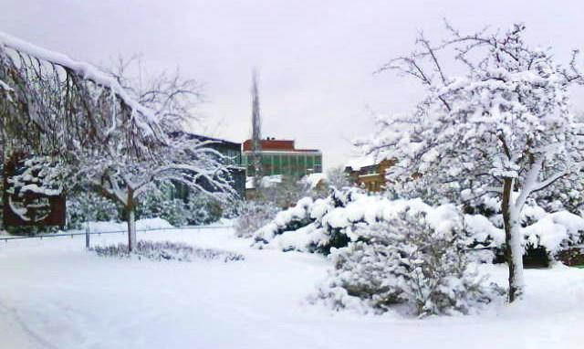 Snöigt 2014-01-15