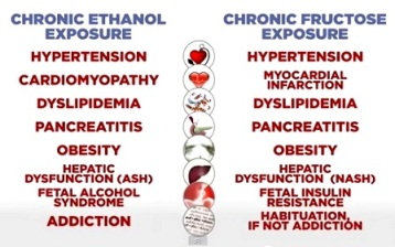 Alkohol vs fruktos