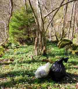 Skräp i skogen