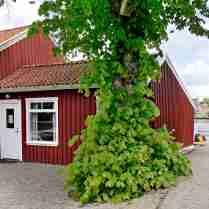 Sjöstugan vid Ångbåtsbryggan. Runt kröken ligger Sörkullen med badplats.