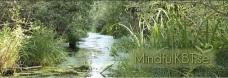 MindfulKBT