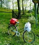 skräp på cykel